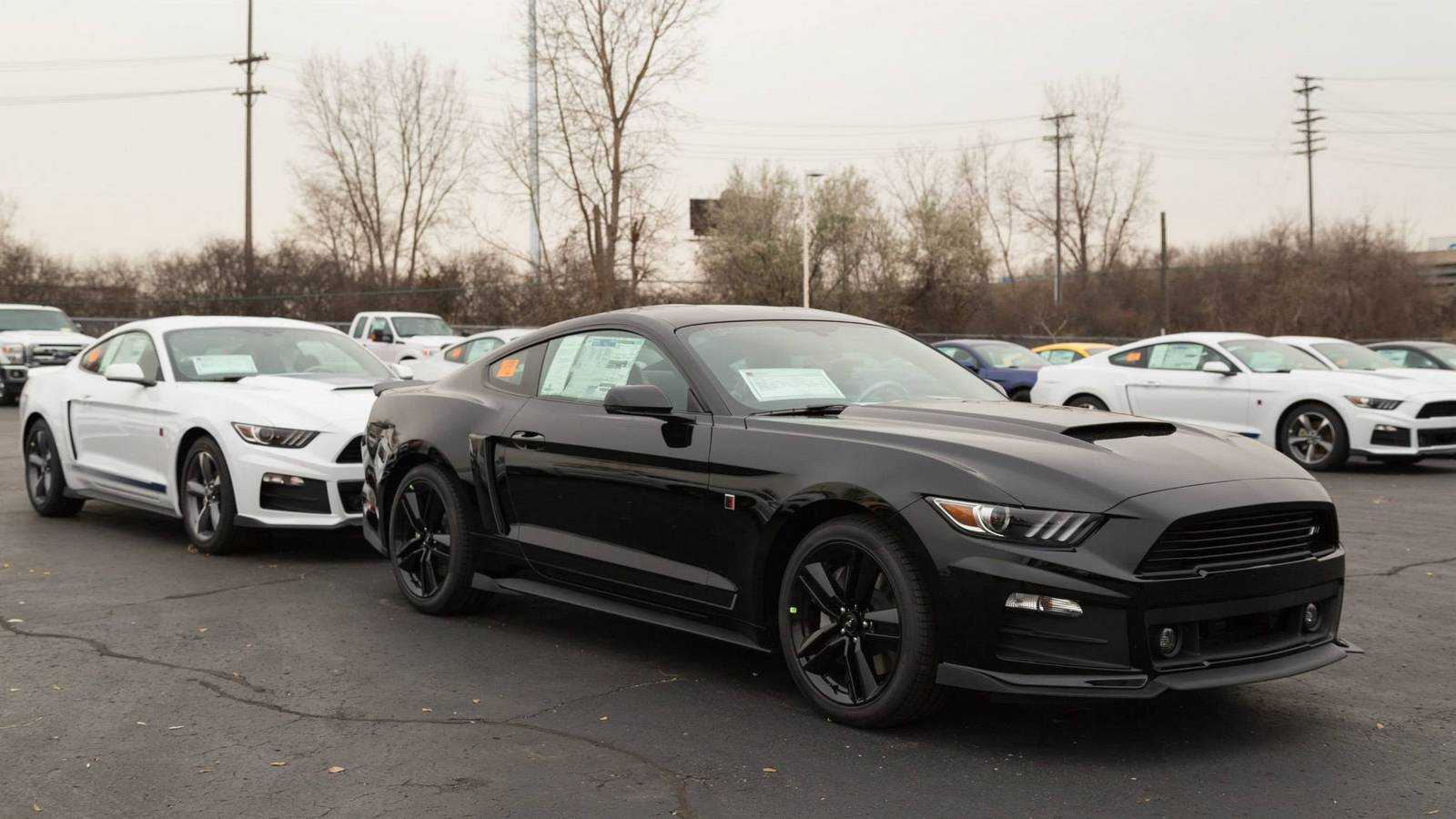 roush reveals first batch of production ready 2015 rs mustangs. Black Bedroom Furniture Sets. Home Design Ideas