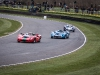 goodwood-members-meeting-group-c-cars6