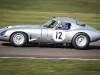 73rd Goodwood Members Meeting Salvadori Cup