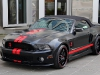 anderson-germany-mustang-gt-1