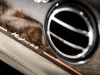 bentley-hybrid-concept-interior-badge