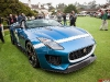 jaguar-f-type-project-7-at-monterey-2013-front