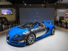 bugatti-veyron-gs-vitesse-1