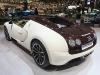 bugatti-veyron-gs-vitesse-9