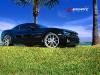 car_0013