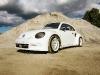 vw-beetle-rally-car-3