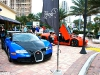 Exotics and Espressos in Miami Florida