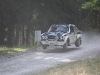 forest-rally-stage-12