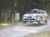 forest-rally-stage-15