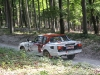 forest-rally-stage-2