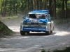 forest-rally-stage-29