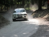 forest-rally-stage-4