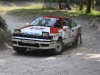 forest-rally-stage-49