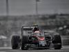 2015-formula-1-us-grand-prix-14