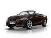 bmw-2-series-cabriolet-27