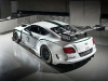 2014-bentley-continental-gt3-race-car_100433118_l