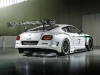2014-bentley-continental-gt3-race-car_100433125_l