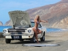 colleen-shannon-shows-her-bikini-body-next-to-a-1966-ford-mustang-photo-gallery_25