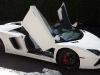 dan-bilzerian-lamborghini-aventador-roadster-for-sale-9