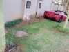 ferrari-458-spider-manages-to-find-a-tree-inside-a-south-african-residential-complex_8