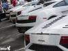 Ferrari and Friends Concorso