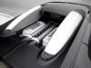 bugatti-veyron-001_100519873_l