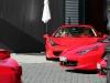 Ferrari Gathering in East Westphalia-Lippe