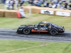 goodwood-festival-of-speed-2014-racers-41