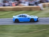 goodwood-festival-of-speed-2014-racers-61