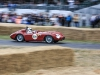 goodwood-festival-of-speed-2014-racers-80