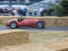 goodwood-festival-of-speed-2014-racers-81