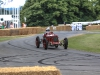 goodwood-festival-of-speed-2014-racers-111