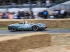 goodwood-festival-of-speed-2014-racers-90