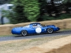 goodwood-festival-of-speed-2014-racers-99