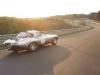 jaguar-lwe-tracking-04-1