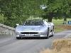 supercars-at-cholmondeley-2013-10