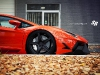 custom-bull-plays-with-autumn-leaves-photo-gallery_6