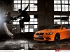 Gallery BMW M3 Tiger Edition
