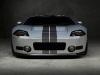 gaplin-auto-sport-ford-gtr1-2