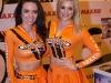 2014-autosport-international-girls-89