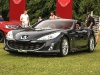 cartier-concours-goodwood-festival-of-speed-2014-25