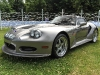 cartier-concours-goodwood-festival-of-speed-2014-8