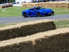 goodwood-festival-of-speed-2014-overview-88