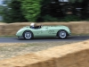 goodwood-festival-of-speed-2014-overview-7