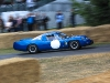 goodwood-festival-of-speed-2014-overview-8