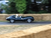 goodwood-festival-of-speed-2014-overview-19