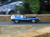 goodwood-festival-of-speed-2014-overview-20