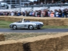 goodwood-festival-of-speed-2014-overview-128
