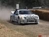 Goodwood 2010 Rally Stage