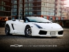 Hamann Lamborghini Gallardo Spyder on PUR Wheels